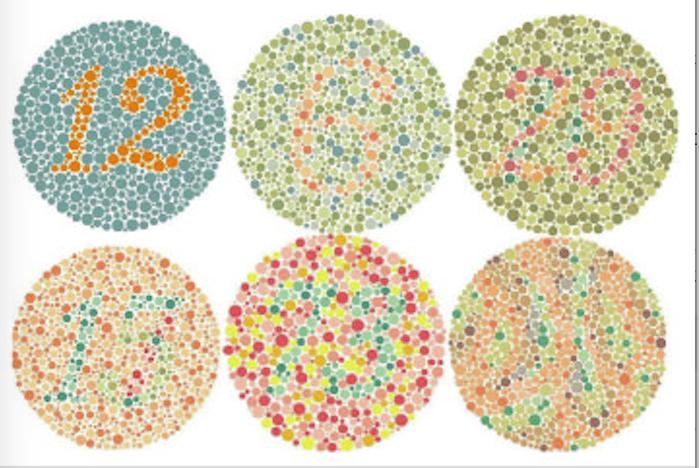 石原式色覚異常検査表の画像