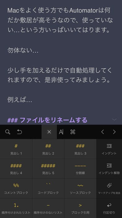 iPhone入力画面2