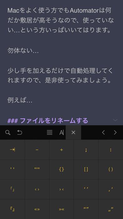 iPhone入力画面3