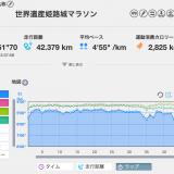 姫路城マラソンレース結果